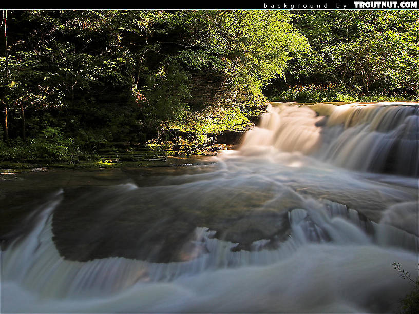 scenic desktop background for download #48