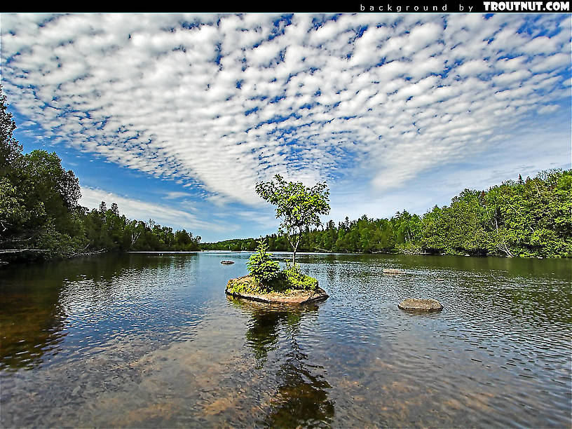 scenic desktop background for download #5