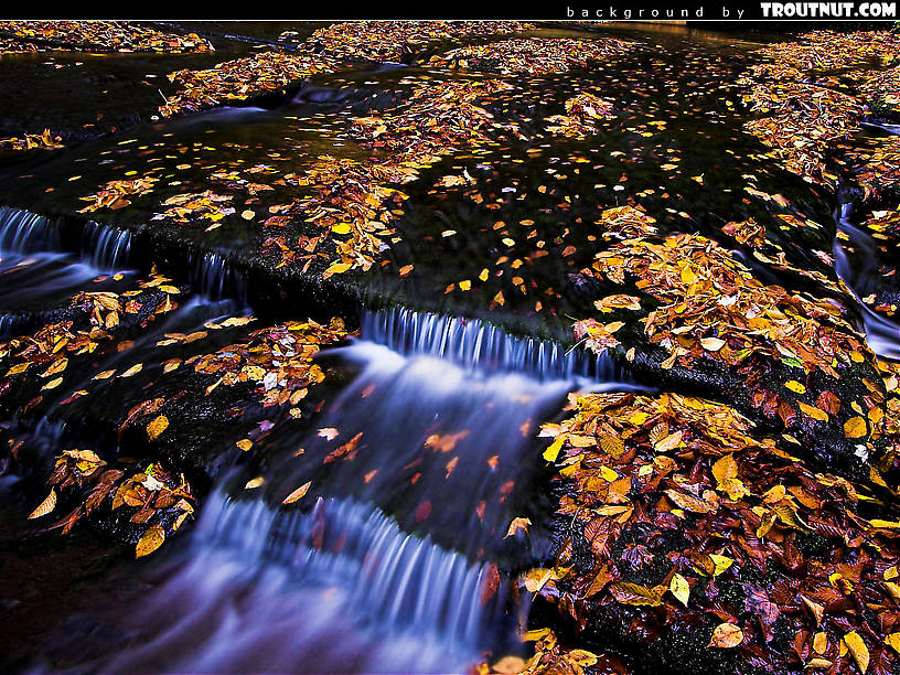 scenic desktop background for download #71