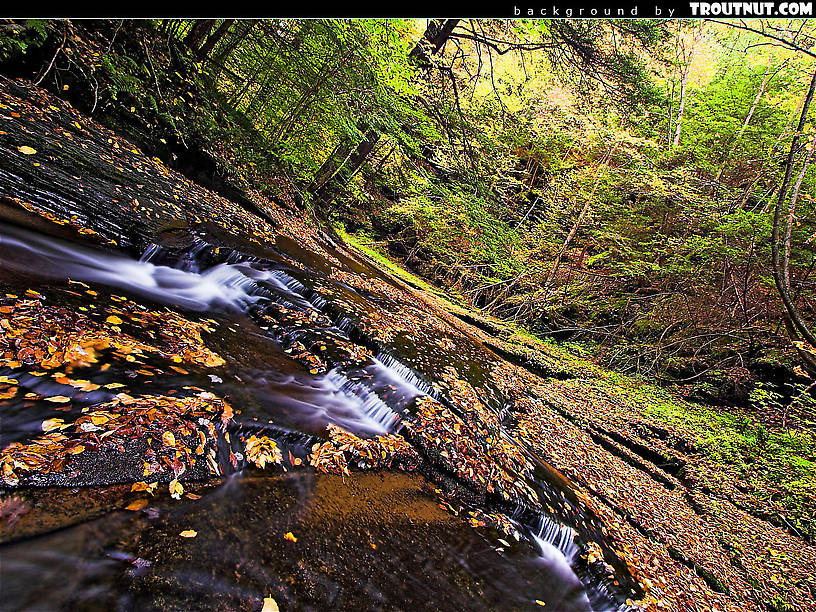 scenic desktop background for download #75