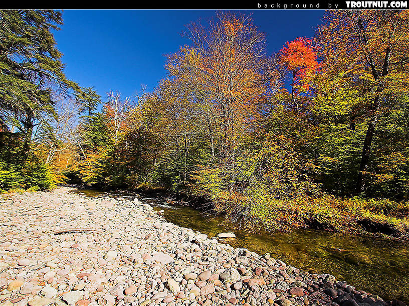 scenic desktop background for download #77