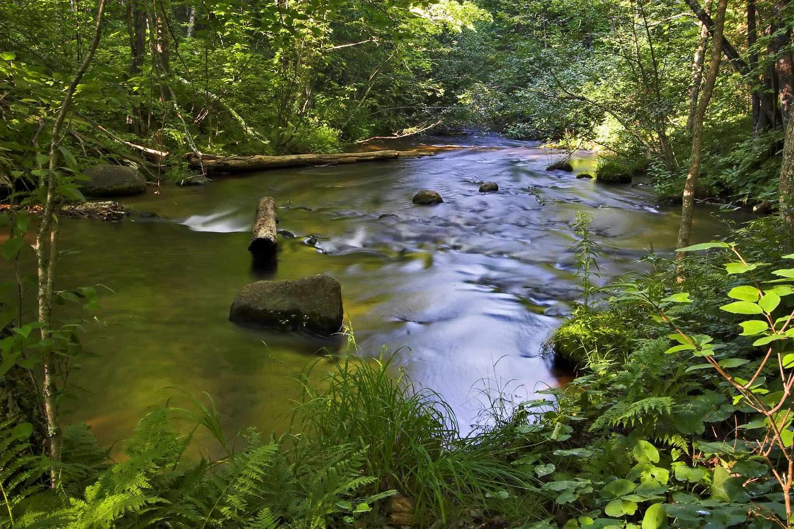 how to build a trout stream