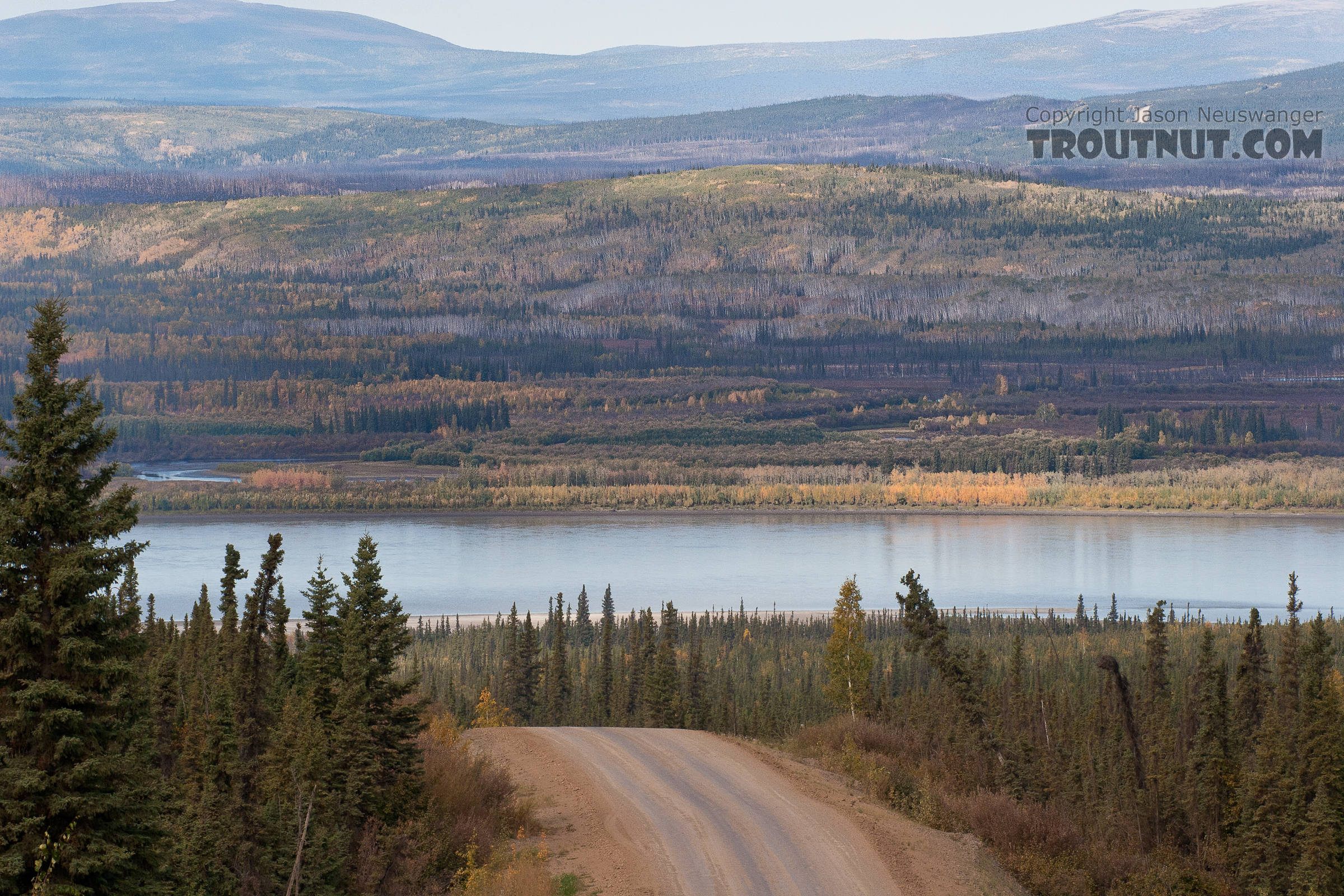 This is the first good view of the Yukon as you come up from the south. From the Yukon River in Alaska.