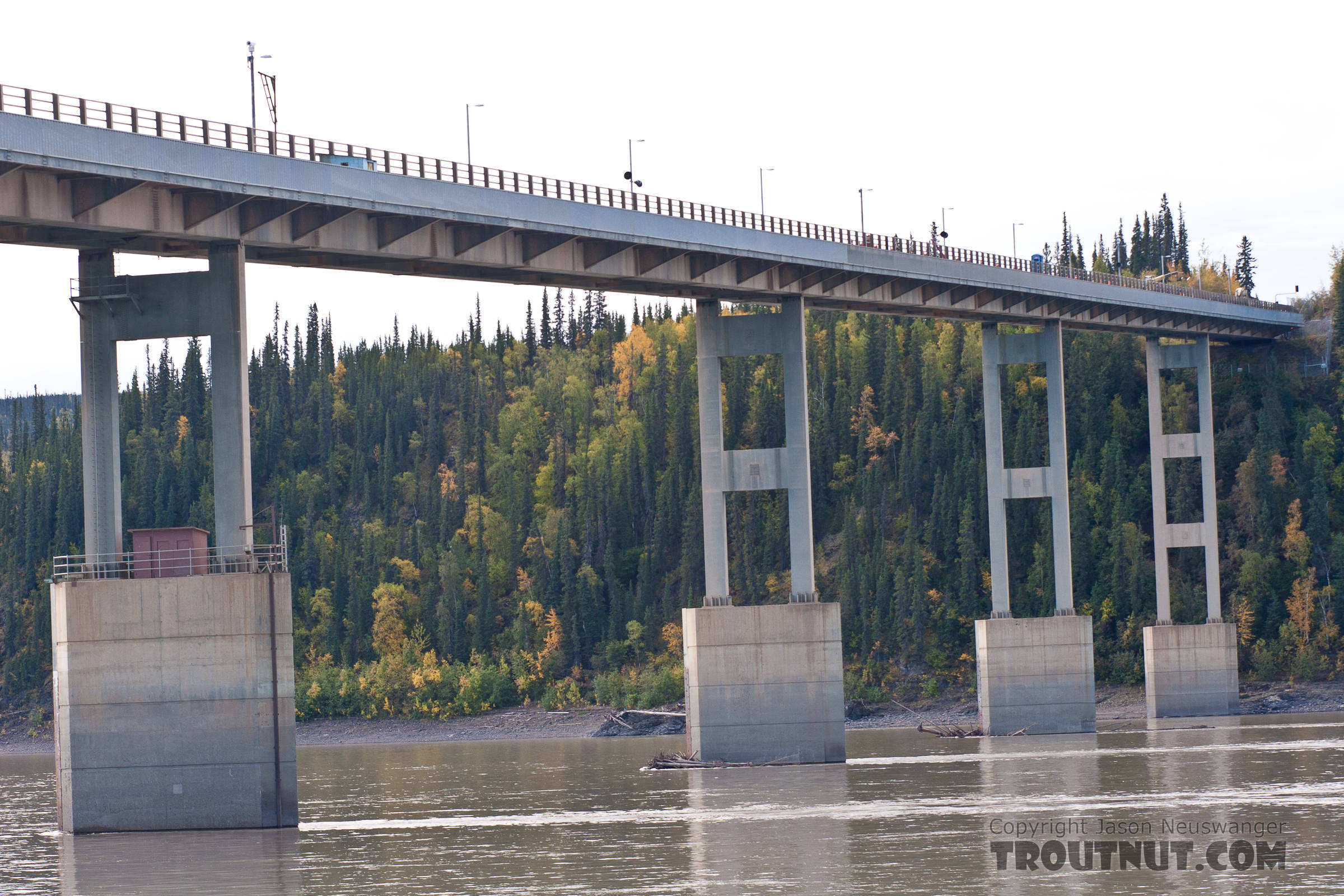 "The Yukon River Bridge.  It doesn't look as intimidating from this angle as from up above when you see that it's ""paved"" with wood, although I trust that was a wise engineering decision given all the truck traffic and extreme weather conditions. From the Yukon River in Alaska."