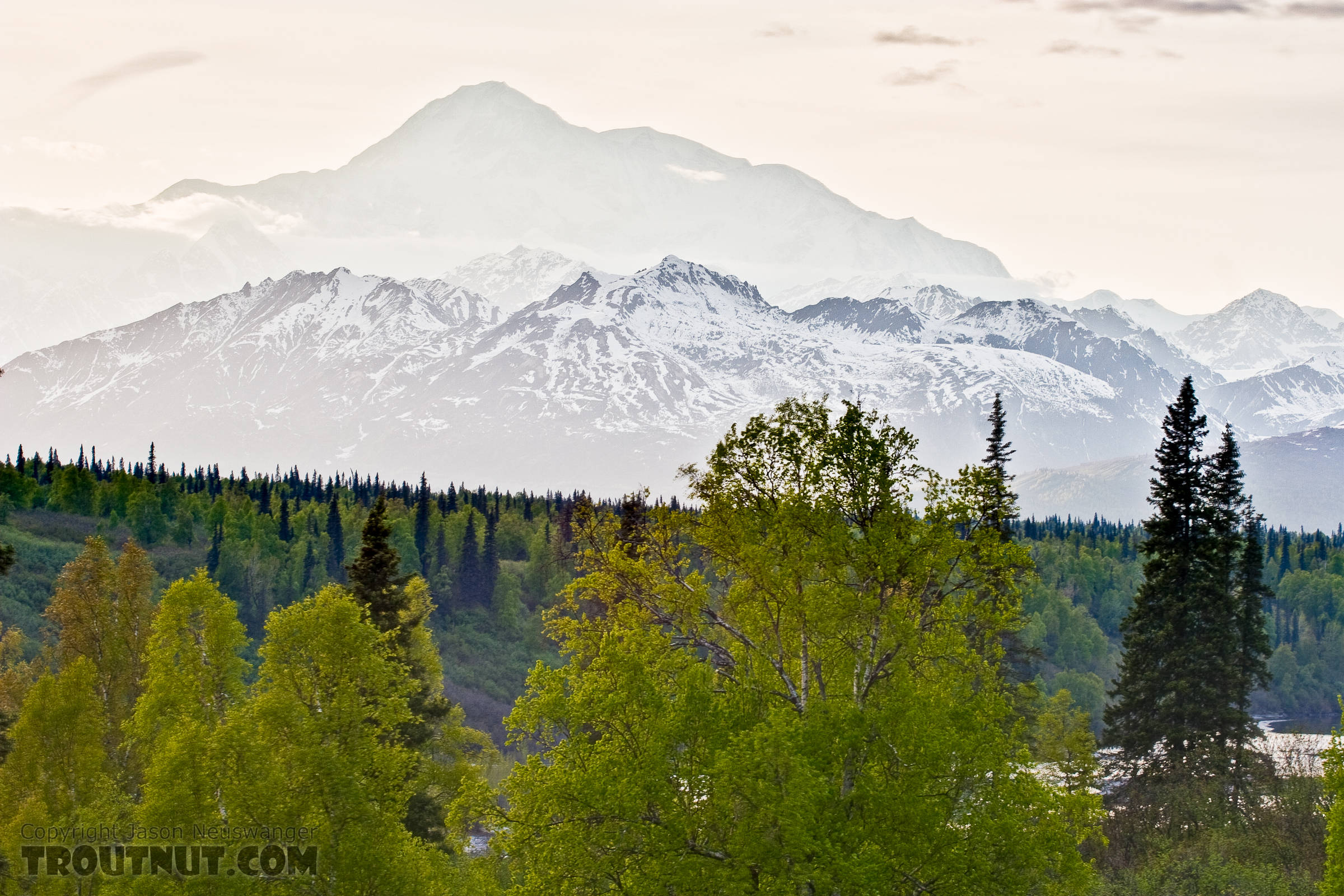 Denali in the background, towering over the rest of the Alaska Range and the Chulitna River in the foreground. From Parks Highway in Alaska.