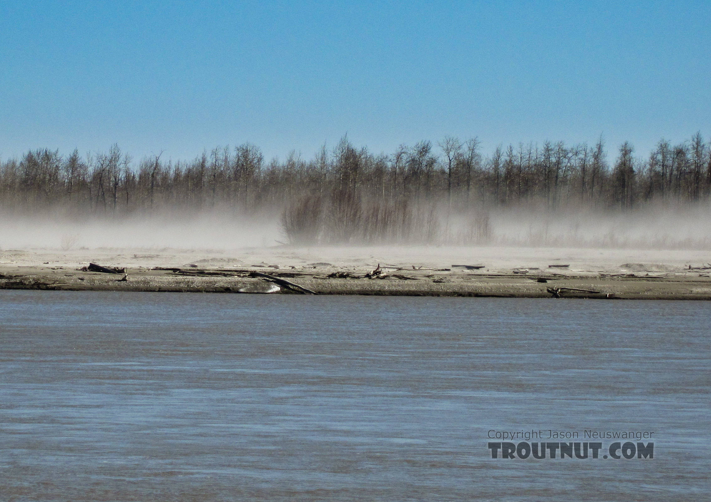 These dust storms are a common sight on the Tanana whenever it hasn't rained for several days.  The river's channel, mostly over a mile wide, consists mostly of vast bars of dry gravel and glacial silt that's easily kicked up by the wind. From the Tanana River in Alaska.