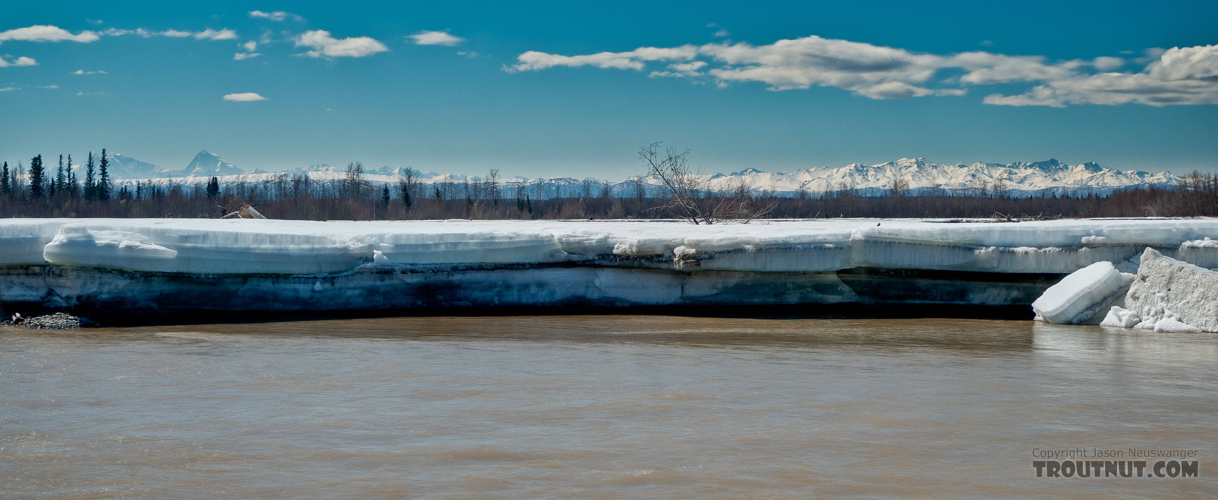 The Tanana still has some big chunks of ice overlaying the gravel bars in many areas. From the Tanana River in Alaska.