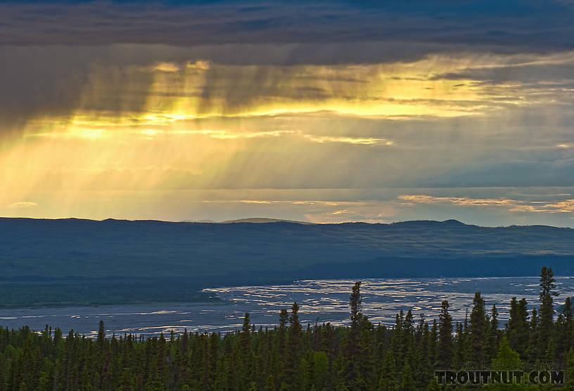 From the Delta River in Alaska.