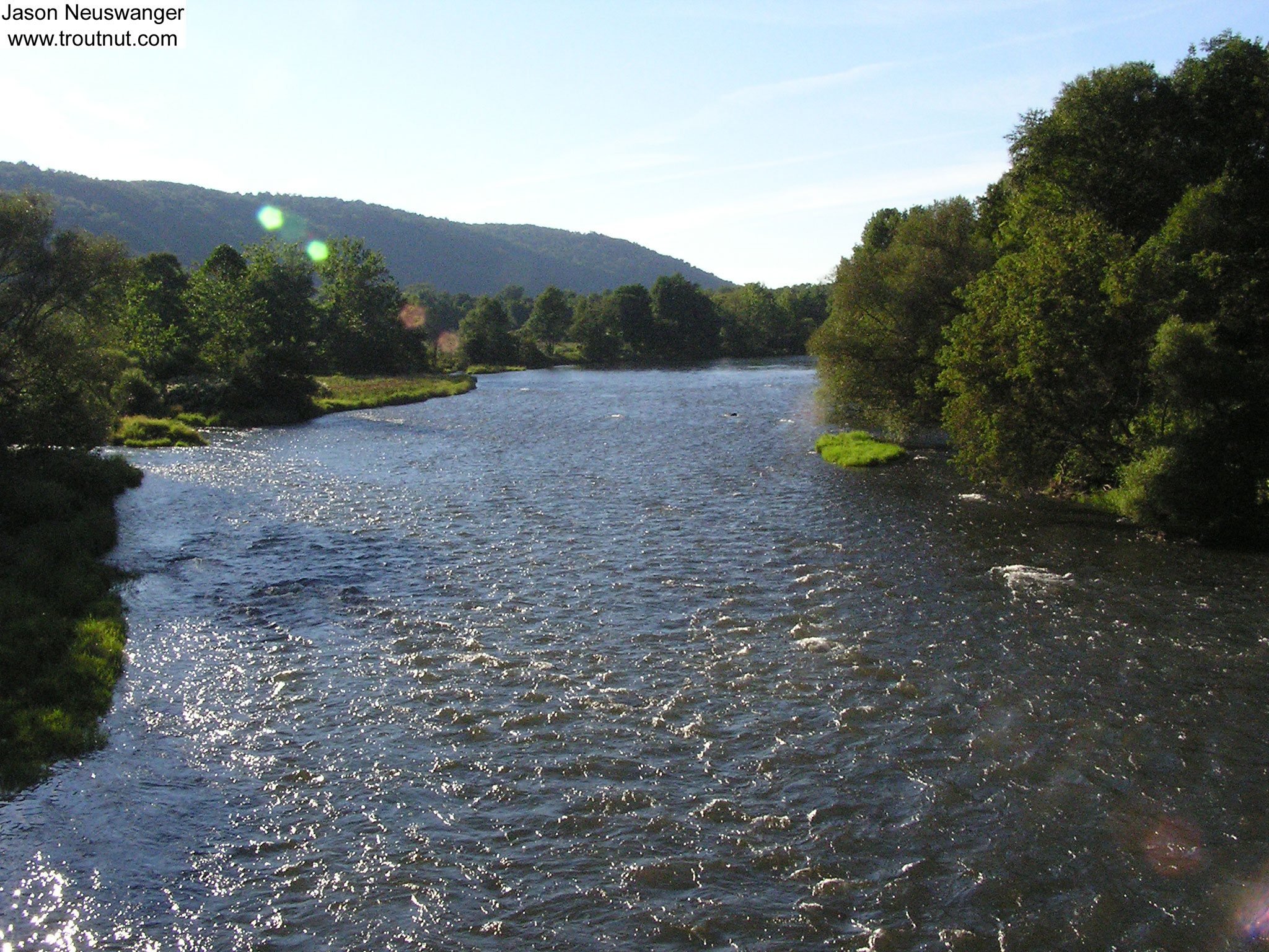 This is one of the most famous trout streams in the country. From the West Branch of the Delaware River in New York.