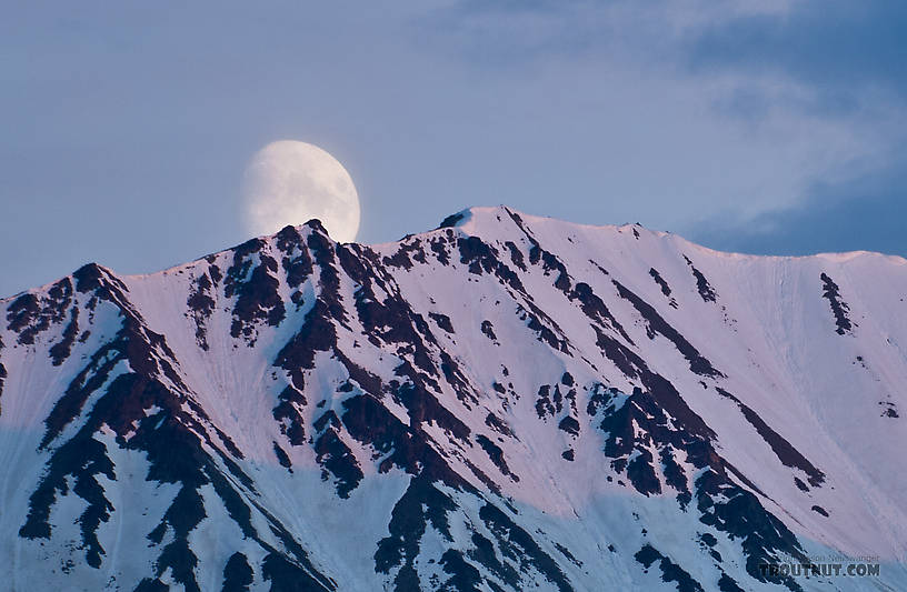 From Richardson Highway in Alaska.