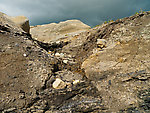 The old small-scale coal mine, along with erosion from Ober Creek, left these coal seams exposed on a hillside, mixed in with other sedimentary rocks. From Ober Creek in Alaska.