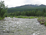 From the Gulkana River in Alaska.