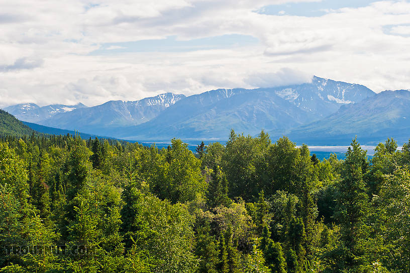 The Delta River and the Alaska Range in the distance. From Richardson Highway in Alaska.
