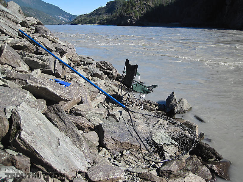 I spent twelve hours holding this net in the river, often in fast current.  The key is to hold it in an eddy, so it billows out upstream and can catch the salmon that are all swimming in that direction.  The eddies along the bank attract salmon because it's easier for them to run upstream with the current than against it.  The best eddies are the narrow ones where the rest of the river is flowing fast downstream most of the salmon hug the bank. From the Copper River in Alaska.