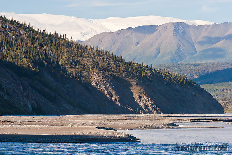 I like this one.  Glacial river, taiga, tundra, and the perpetual ice cover of a massive high ridge dozens of miles away in the Wrangell Mountains. From the Copper River in Alaska.