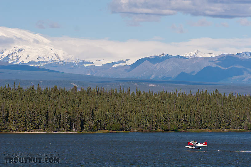 A float plane takes off from Willow Lake near Glennallen along the Richardson Highway. From Richardson Highway in Alaska.