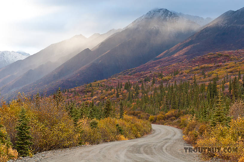 From Denali Highway in Alaska.