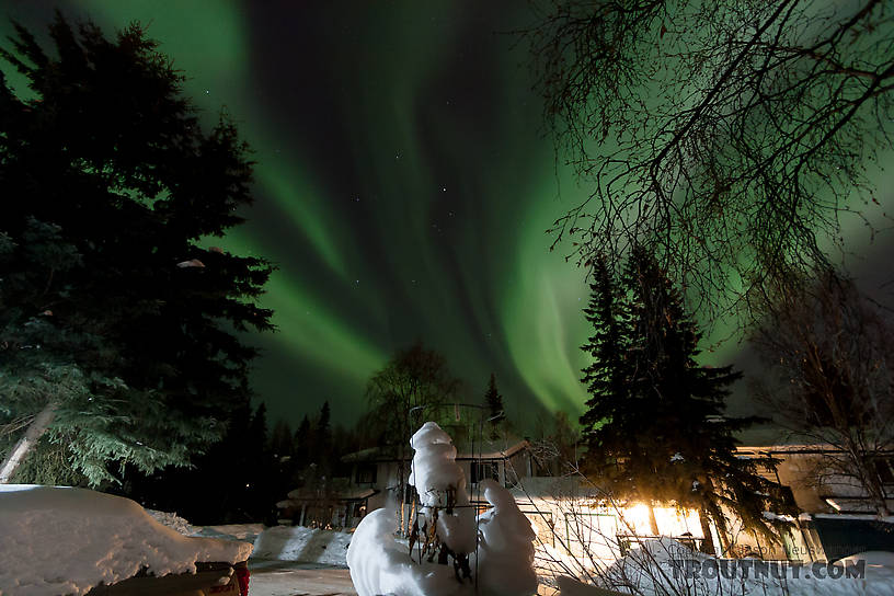 Here's the view from my front porch in Fairbanks, Alaska, during a nice auroral display. From Fairbanks in Alaska.