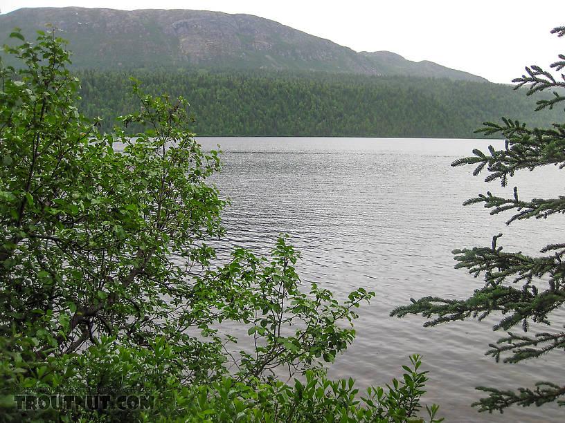 Byers Lake, the source of Byers Creek.  Kesugi Ridge in the background is a popular hiking spot. From Byers Creek in Alaska.