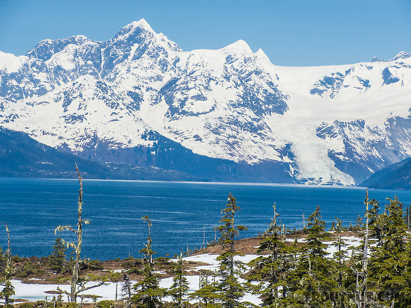 From Prince William Sound in Alaska.