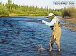 Lena landing a feisty grayling. From Nome Creek in Alaska.