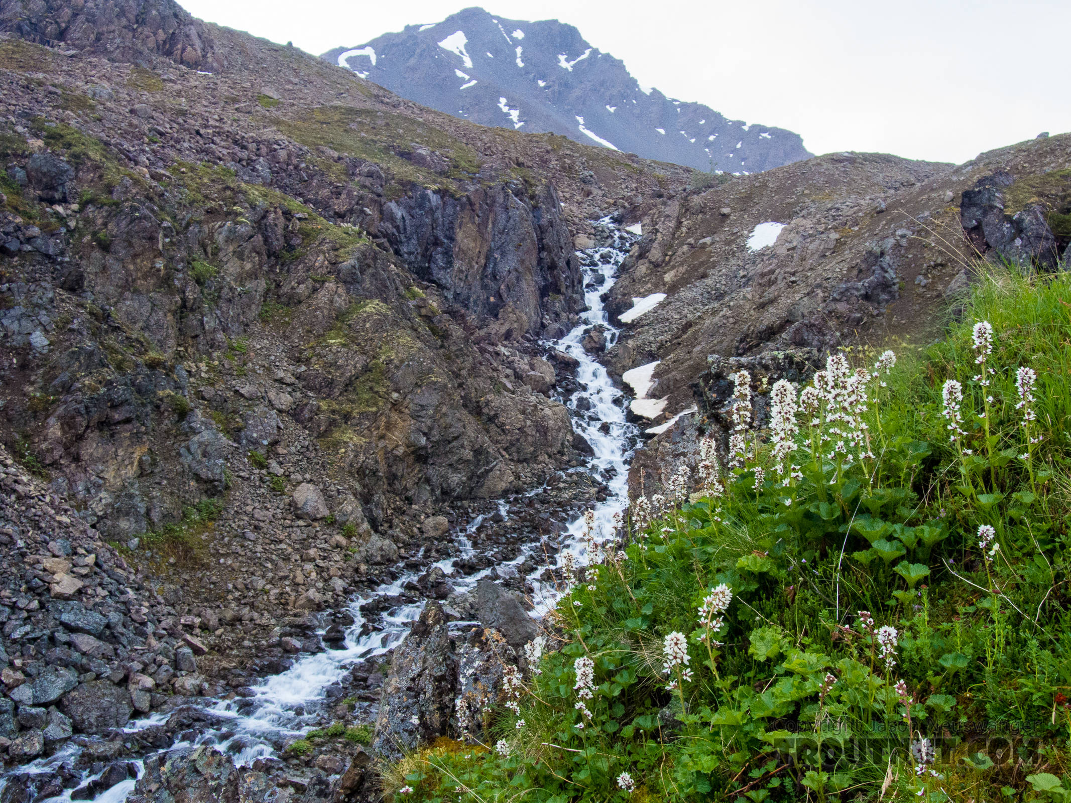 South Fork Pass Creek flowing through a little canyon From the South Fork of Pass Creek in Alaska.