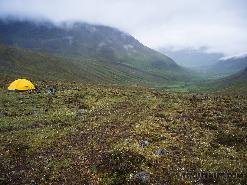 Third night's camp. Looking down-valley toward upper Windy Creek. From Clearwater Mountains in Alaska.