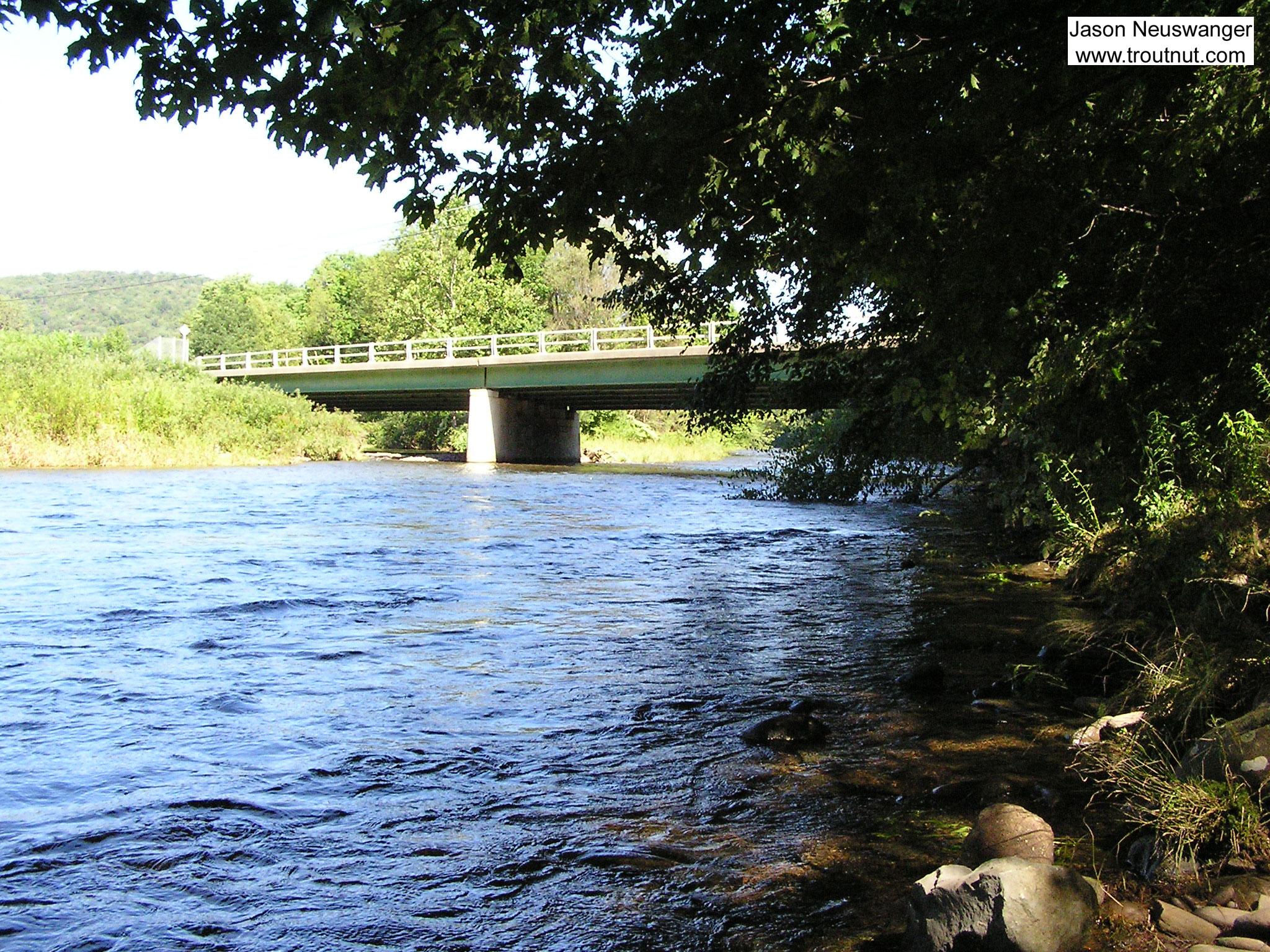 From the Beaverkill River (Upper) in New York.