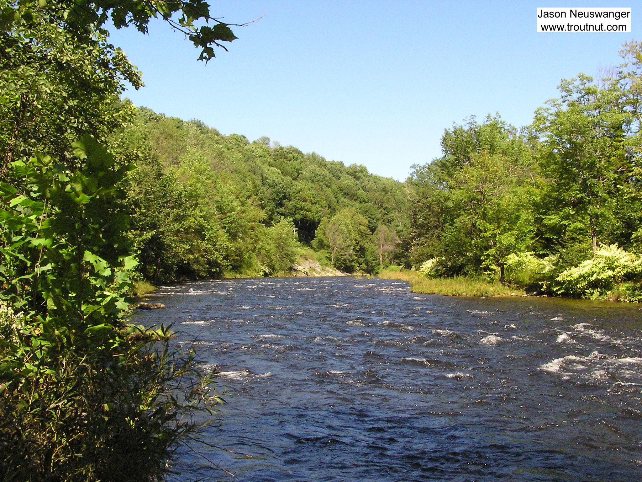 From Willowemoc Creek in New York.