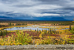 Tundra puddle From Denali Highway in Alaska.