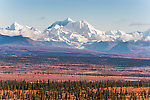 Mt Hayes From Denali Highway in Alaska.