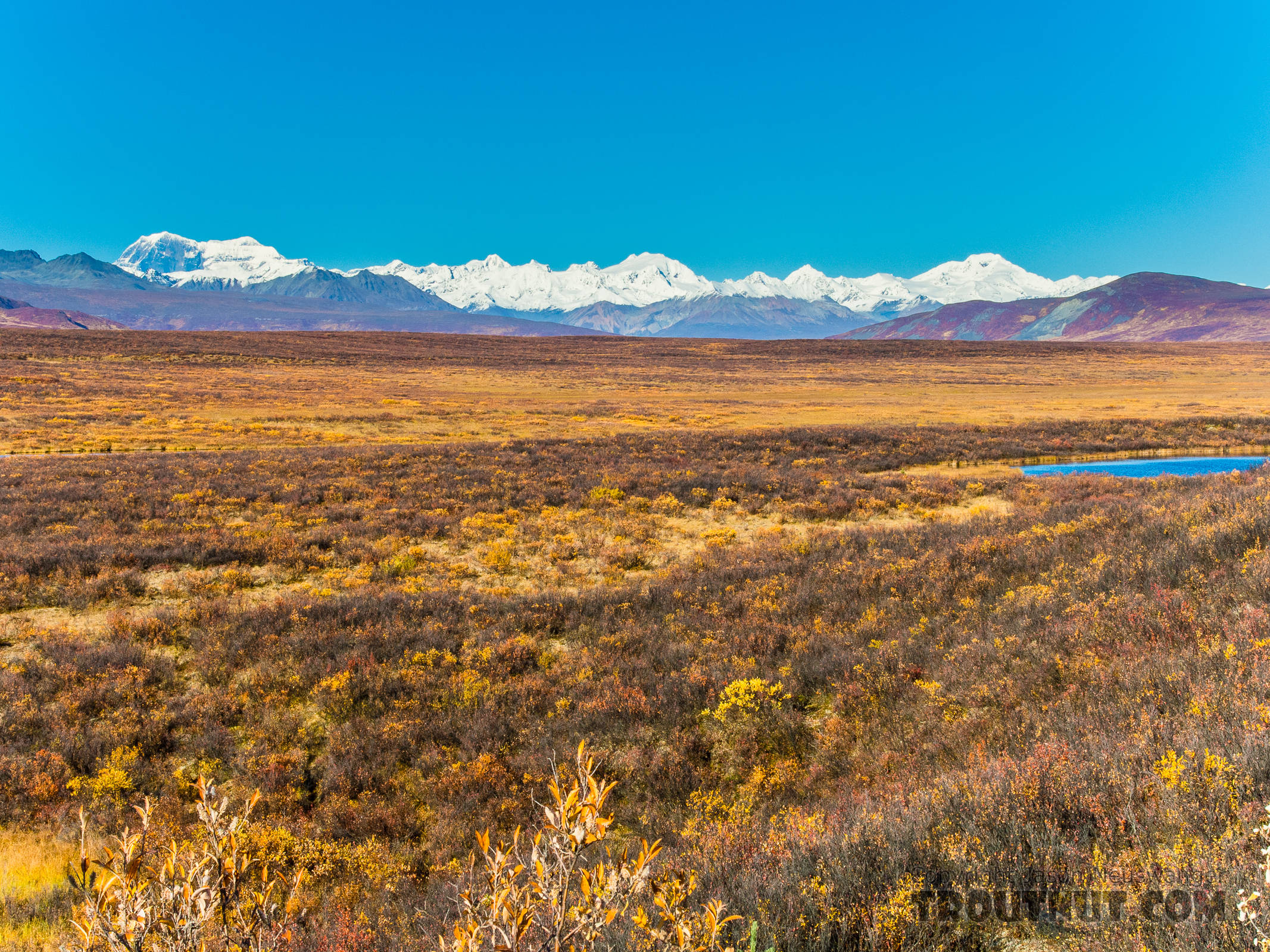 Alaska Range from Mile 52 Denali Highway. The left-most double peak is 12,510-foot Mt Shand (left) and 13,020-foot Mt Moffit (right). The other two tall peaks, middle and right, are unnamed (at least on Google Earth). The peak on the horizon about 2/3 of the way from Mt Moffit to the unnamed middle peak is 11,400-foot McGinnis Peak. From Denali Highway in Alaska.