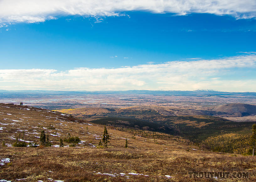 View over Minto Flats From Murphy Dome in Alaska.