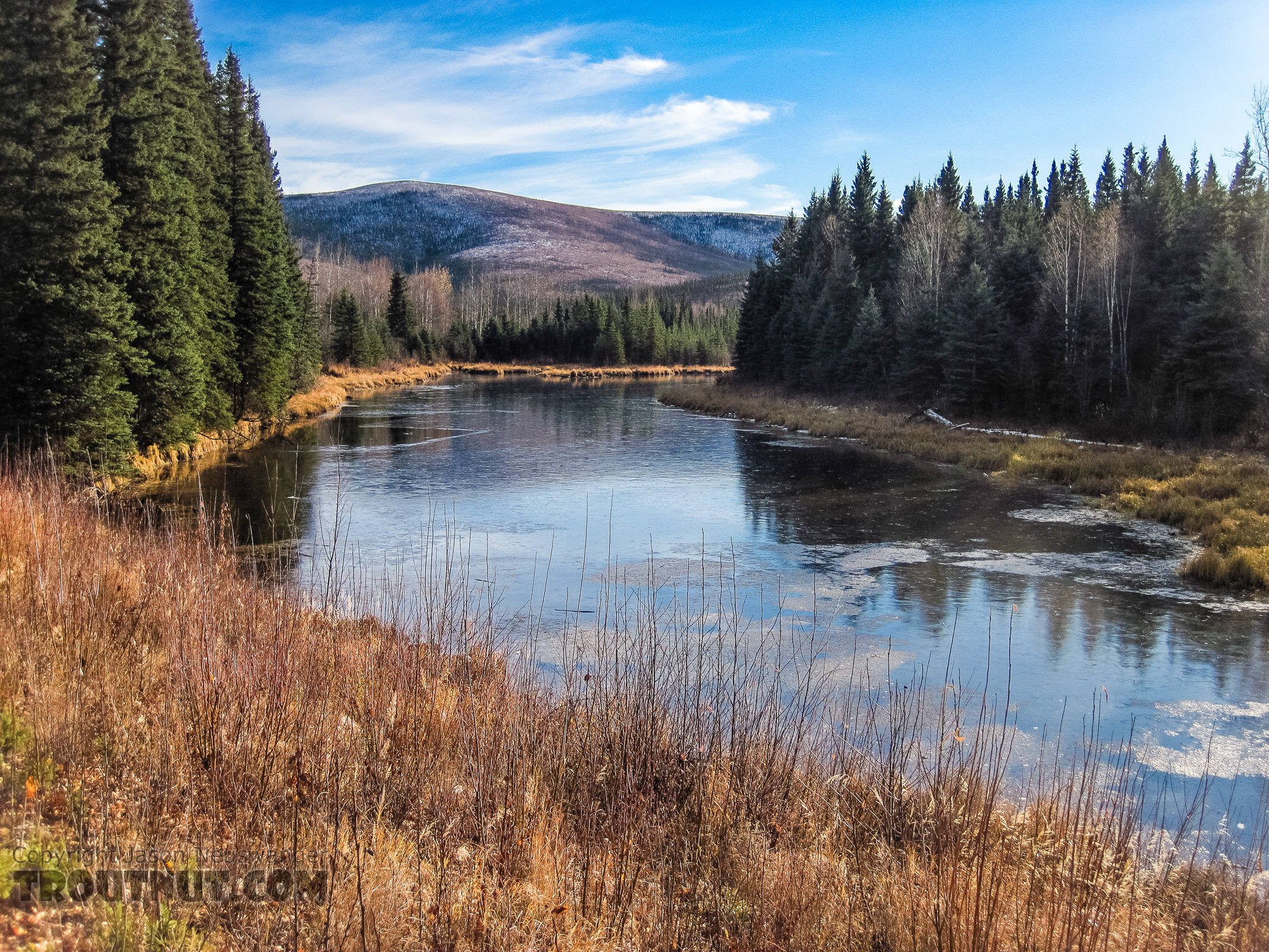 This little slough along Chena Hot Springs Road was beginning to freeze over, but the main river was not. From the Chena River in Alaska.