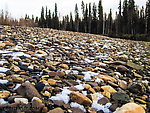 Snowy gravel bar From the Chena River in Alaska.