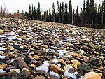 Snowy gravel bar From the Chena River in Alaska.