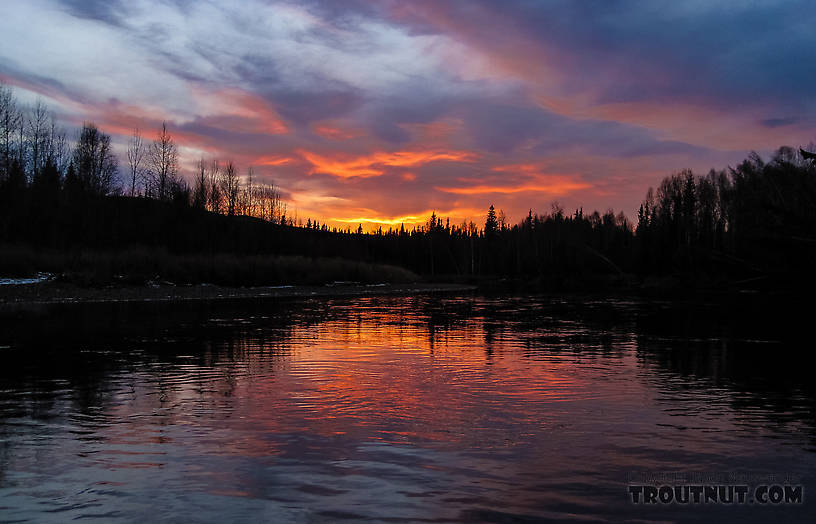 "Beautiful sunset, just four or five ""almost theres"" from the car. From the Chena River in Alaska."
