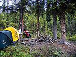 From Mystery Creek # 170 in Alaska.