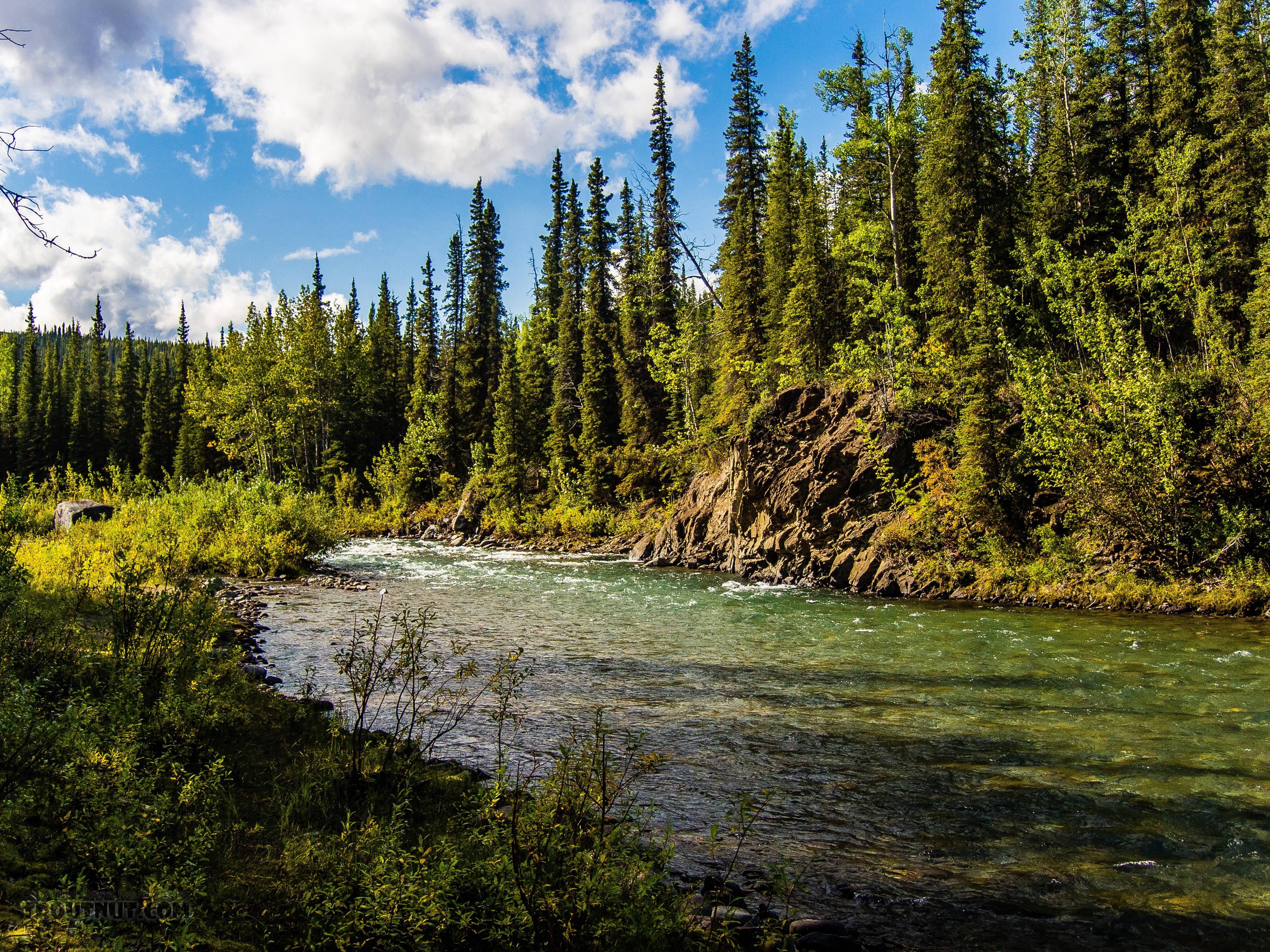 From Riley Creek in Alaska.