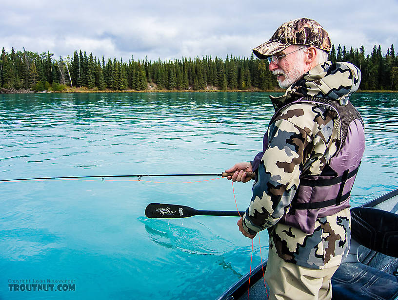 Dad fishing the Kenai From the Kenai River in Alaska.