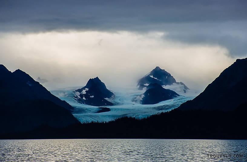 From Kachemak Bay in Alaska.
