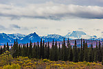 12096 ft Mt Mather From Denali National Park in Alaska.