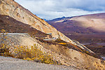 Road through Polychrome Pass From Denali National Park in Alaska.