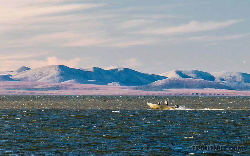 Boat in the Chukchi Sea From Kotzebue in Alaska.