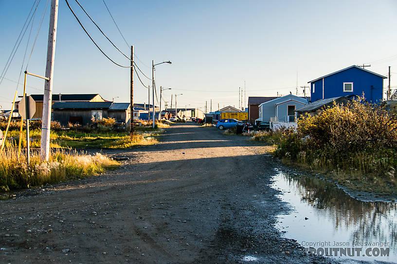 Street in Kotzebue From Kotzebue in Alaska.