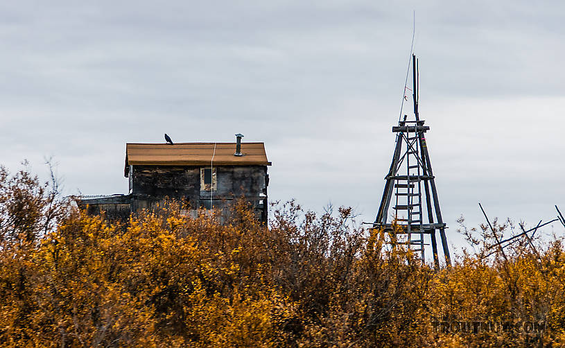 Cabin with caribou watchtower From the Selawik River in Alaska.