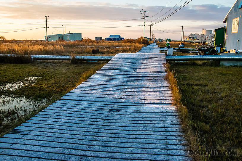 Frosty roadway in Selawik From Selawik in Alaska.