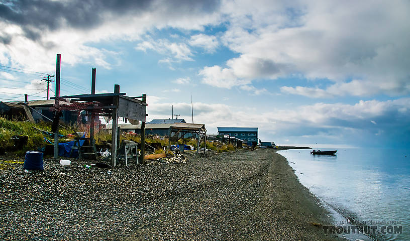 Kotzebue waterfront on the Chukchi Sea From Kotzebue in Alaska.