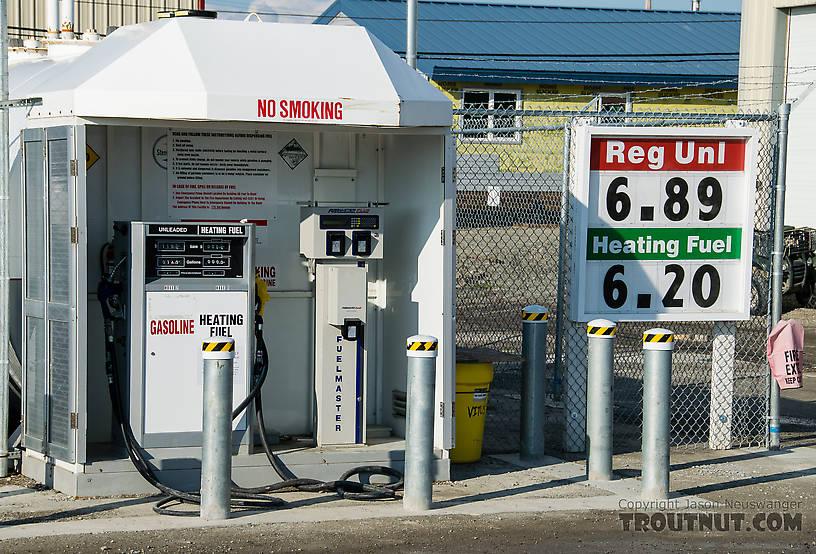 Kotzebue gas prices From Kotzebue in Alaska.