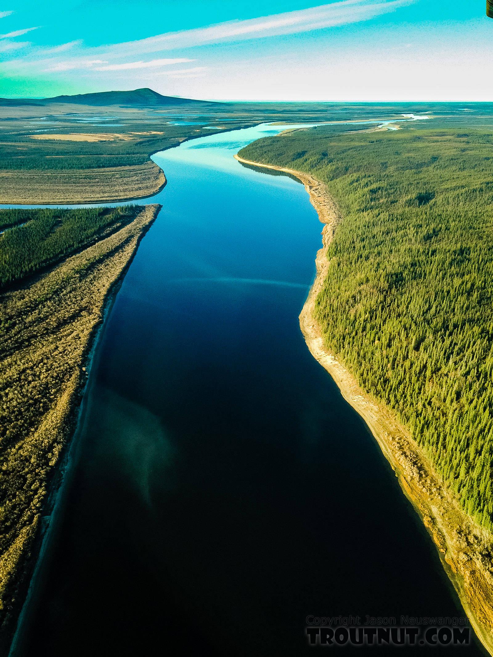 Kobuk River near Kiana From the Kobuk River in Alaska.